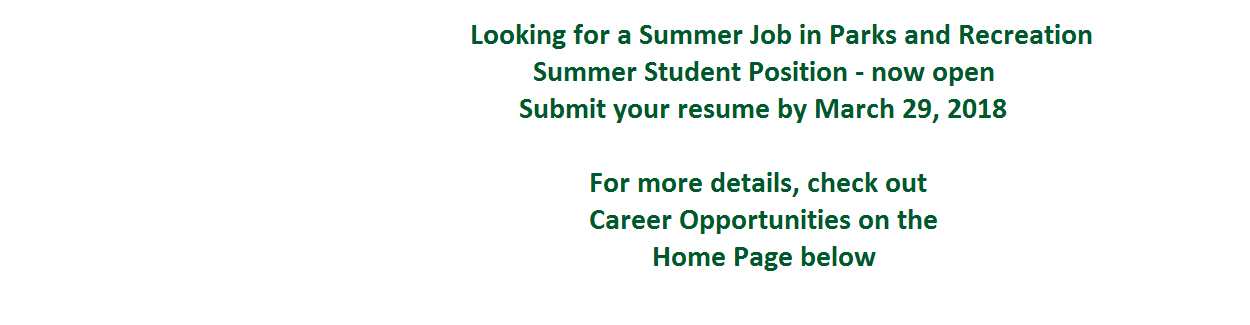 Summer Student Position
